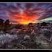 Lava Flow Sunset - hdr