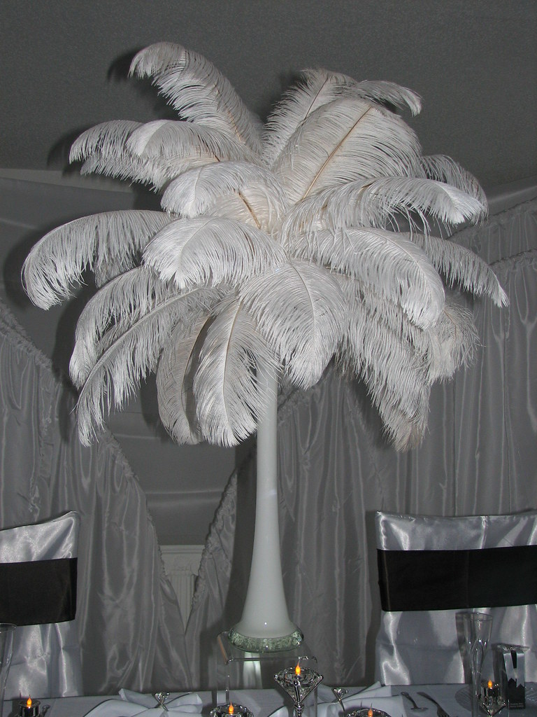 Ostrich feather centerpiece decorations feathers