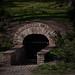 Tunnel nah