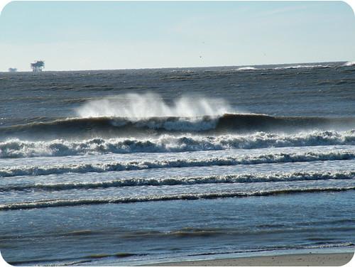 Louisiana Surf | Looki...