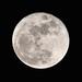 Moon @1200mm