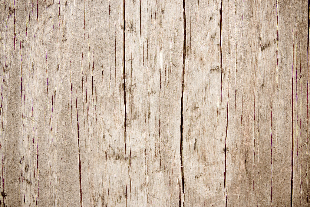 Dead Wood This Texture Is Free To Use In Your Personal
