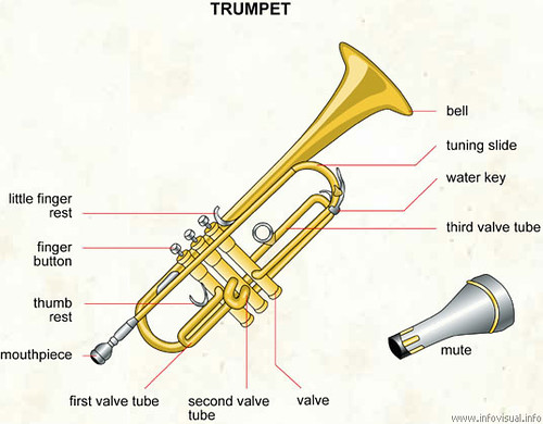 Trumpet Diagram The Infovisual Info Site Uses Images To