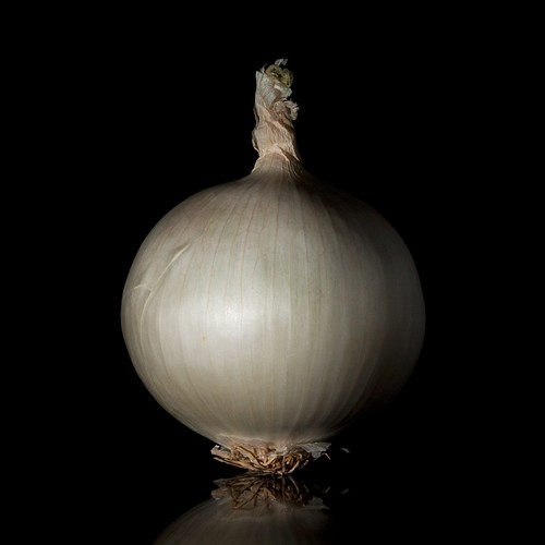 The Onion (92 of 365) | by rimblas