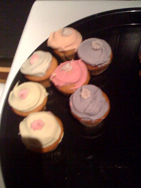Baby Cakes Mini Cupcake Recipe Book Pdf