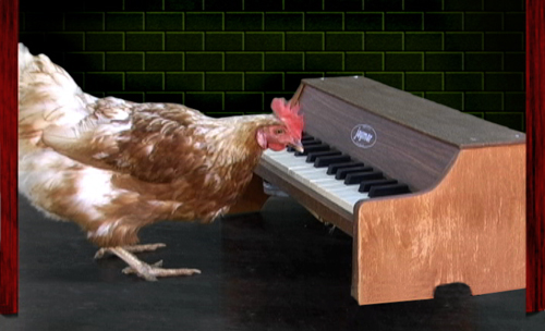 how to play chicken fried on piano