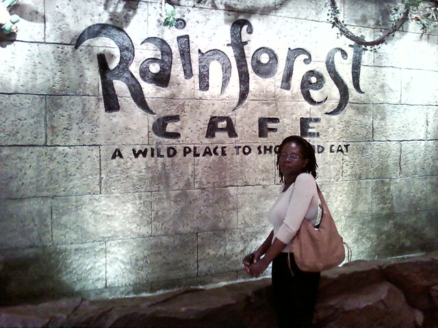 Rainforest Cafe Phoenix Mills Lower Parel