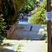 2002_05_Athen_Byen_På vei ned fra Lycabettos_01