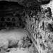 bar kochba caves 2.3.09 - 66