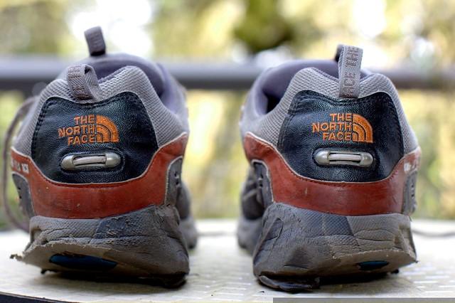 Trendy Walking Shoes