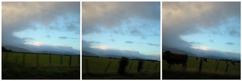 The drive to Hawkes Bay | by Vitamin-K