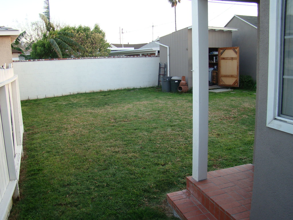 our backyard 032409 some small changes coming to our backy u2026 flickr