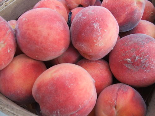 Freestone Peaches from Rhoads Farm Market | by swampkitty