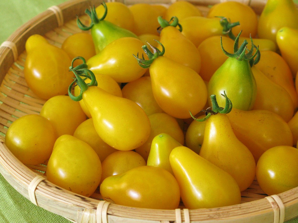 yellow cherry tomatoes - photo #44