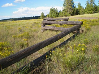 Flagstaff Fence | by grtaylor2