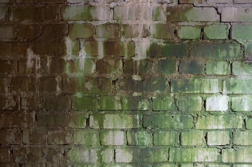 texture - grimy brick wall | by SnaPsi Сталкер
