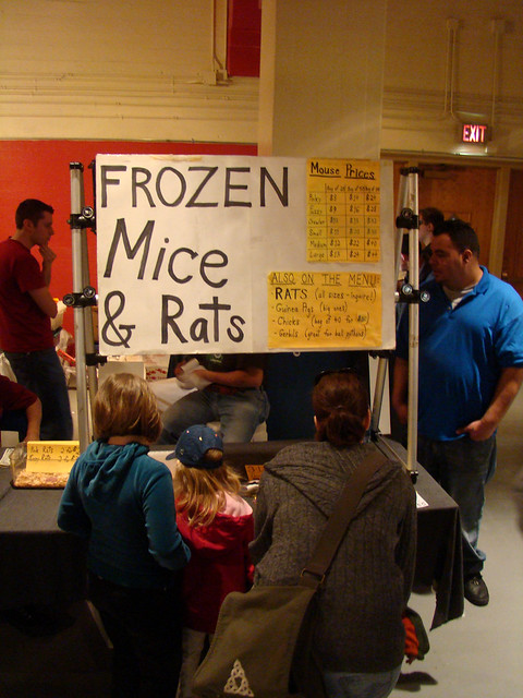 Frozen Reptile Food Multipack Uk