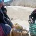 Bolivia - Sucre - Tarabuco Market - Egg Ladies