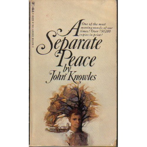 a separate piece outline A separate peace by john knowles chapter 1 i went back to the devon school not long ago, and found it looking oddly newer than when i was a student there fifteen.