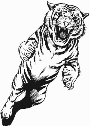 Pouncing Tiger Angi Skinner