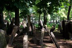 Starý židovský hřbitov (Old Jewish Cemetery, Prague)