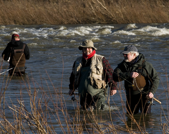 Walleye fishermen wading the maumee river fishing for for Maumee river fishing report