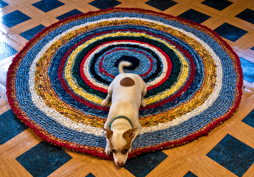 Jack on the Circle Rag Rug DONE! | by Susan Harner