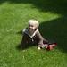Ollie on the grass