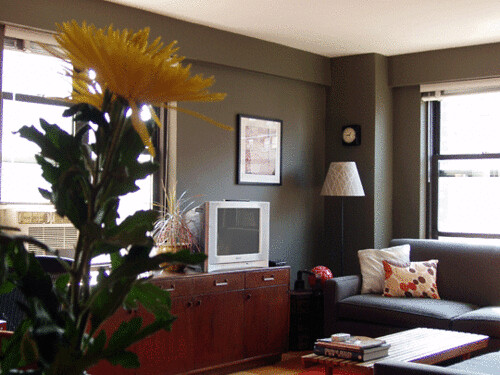 Real homes] Dark green-gray living room: Ralph Lauren paint ...