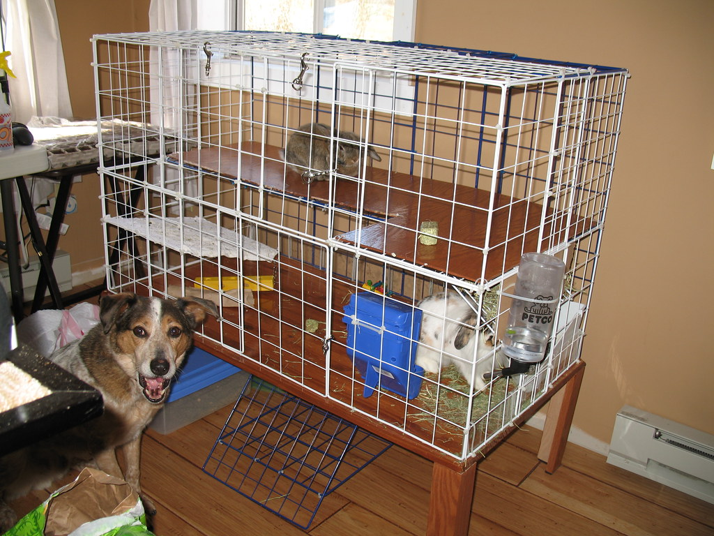 Homemade Rabbit Cage 2 Cage Made Of A Few Boards A