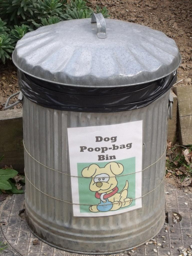 Image Result For Dog Bag