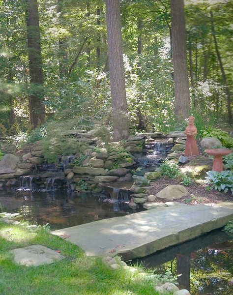 pond construction with bridge ramsey nj ornamental fish