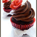 Chocolate & Hazelnut Cupcakes w. Dark Chocolate Frosting