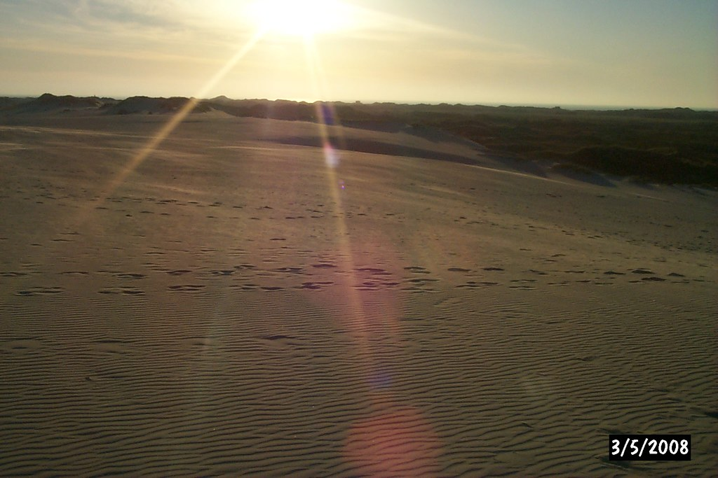 Dune mobili a r bjerg mile nel nord della danimarca - Mobili danimarca ...
