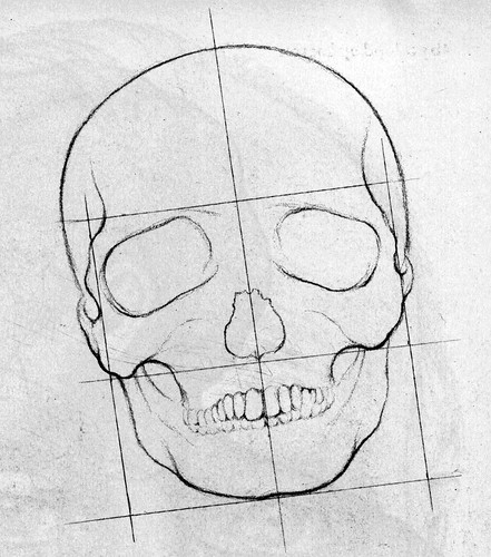 Skeleton Face Line Drawing : How to draw a face the skull flickr photo sharing