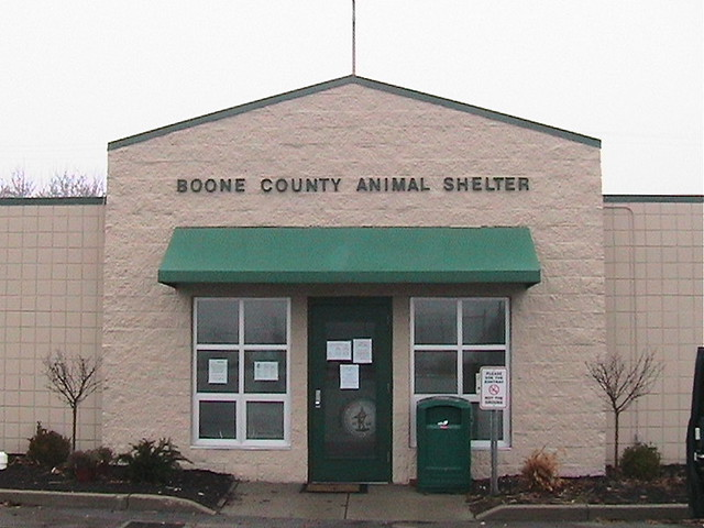 Boone County Animal Shelter Can You Imagine Dumping The Fa Flickr