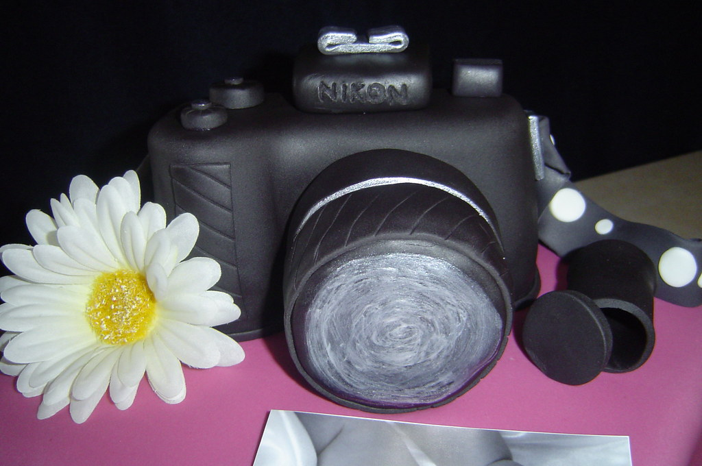 Surprise Camera Cake | I was a nervous wreck in the days