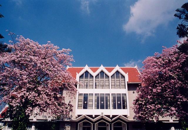Kasetsart University2