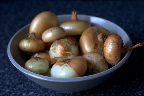 cipollini onions | by smitten kitchen