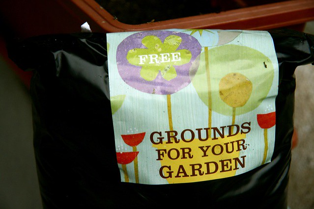 Will Coffee Grounds Keep Cats Away