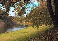 Parramatta River in Parramatta Park (1) | by dicktay2000