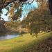 Parramatta River in Parramatta Park (1)