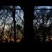 Last light - Under the Triborough Bridge