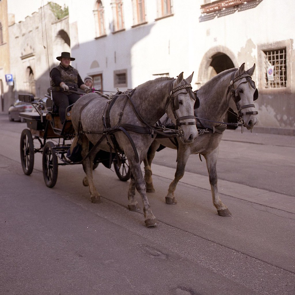 Carrozza con cavalli pergine valsugana trentino italy for Mobili cavalli pergine valsugana