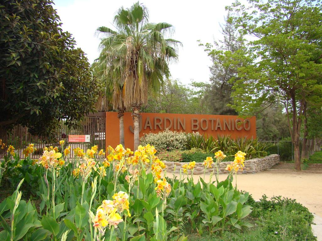 Jard n bot nico fotograf a por fernando haro for Plantas de un jardin botanico