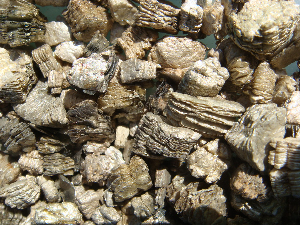 Zonolite Vermiculite Detail Close Up View Of Zonolite