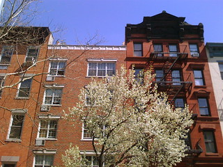 East Village, St. Mark's Place, Spring 2009 in New York City | by jebb