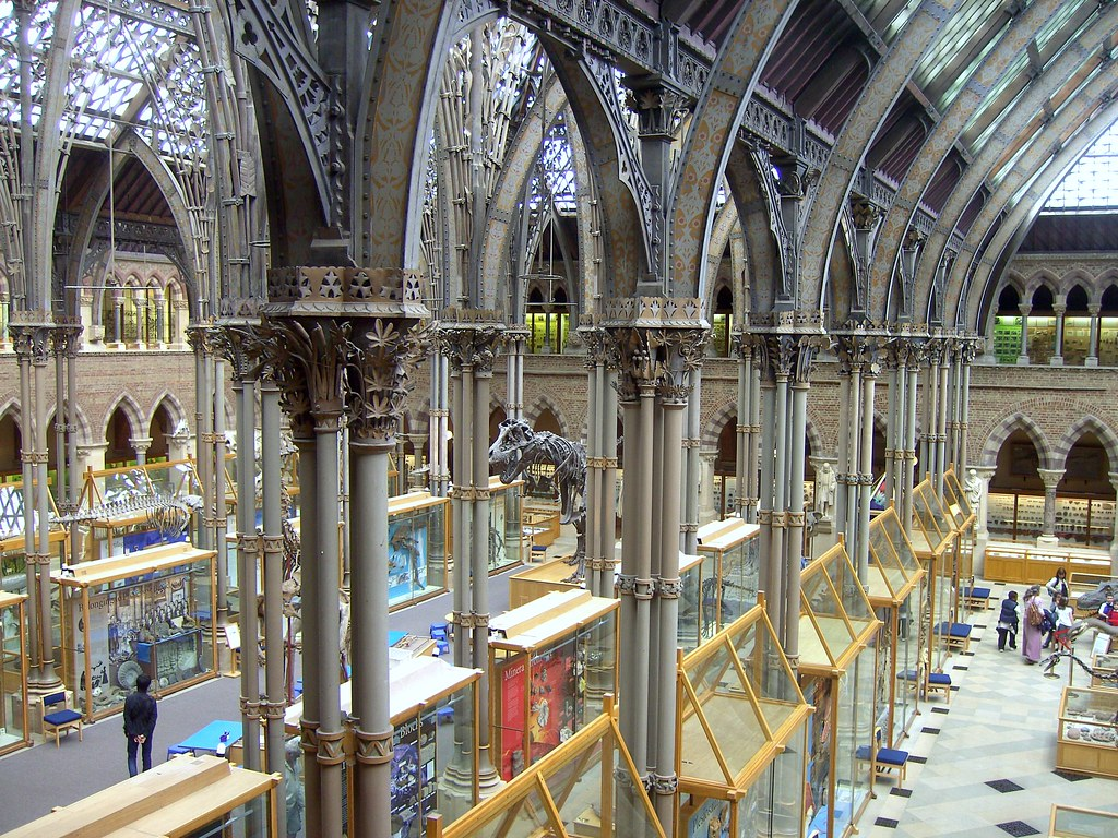 Jobs At The Natural History Museum Oxford