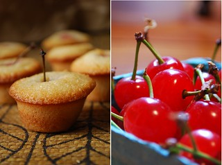 Sour Cherry Financier & Sour Cherries | by Alejandra of Always Order Dessert