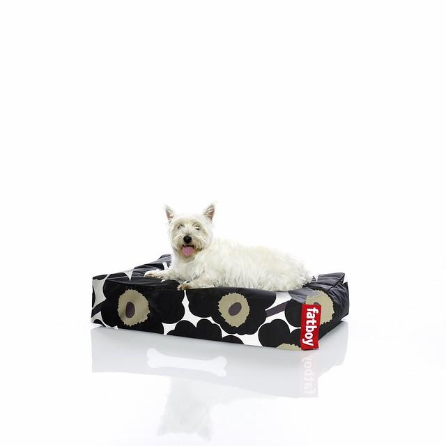 5225 wdybt fatboy doggie marimekko black s flickr. Black Bedroom Furniture Sets. Home Design Ideas